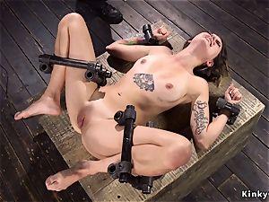warm booty beauty in tool bondage lashed